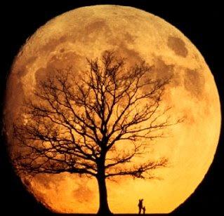 naranja-luna-anaranjada-orange-moon.jpg